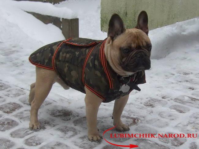 http://lubimchiik.narod.ru/DSCF5191.jpg